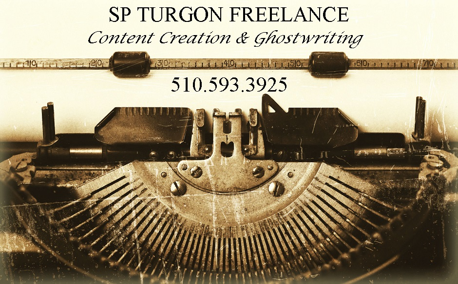 SP TURGON Freelance